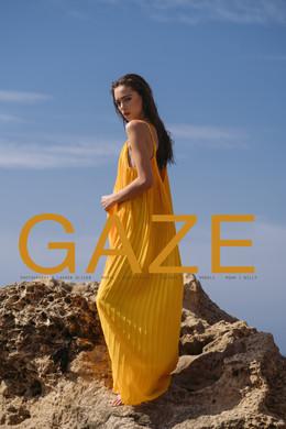 gaze cover1.jpg