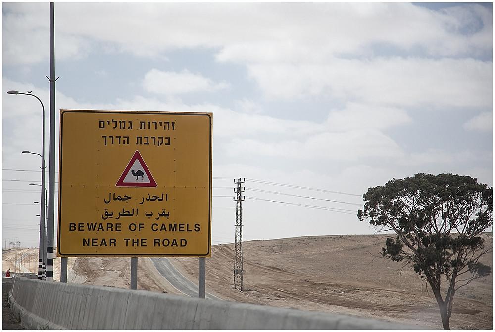 Israel | Travel_0027.jpg