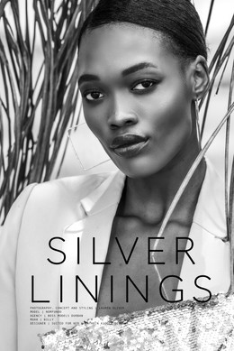 Cover Silver Linings3.jpg