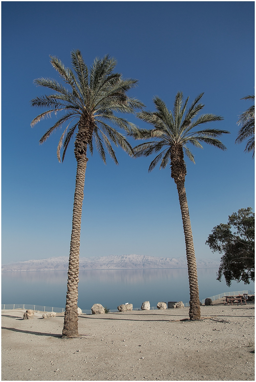 Israel | Travel_0017.jpg