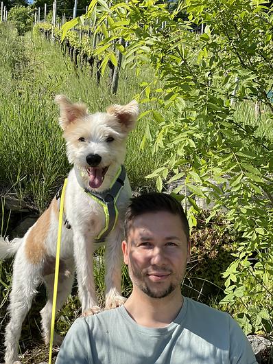 Philosophie Hundetraining Hundeschule Limmathunde