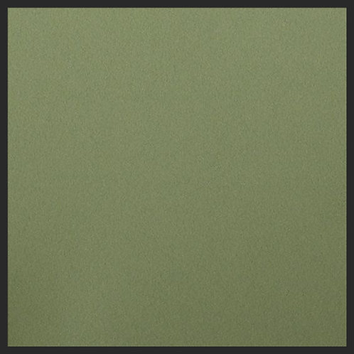 Basis Olive
