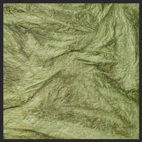 Olive Green Leather Wrinkle