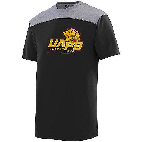 UAPB-AUG-UAPB-3055-BGH