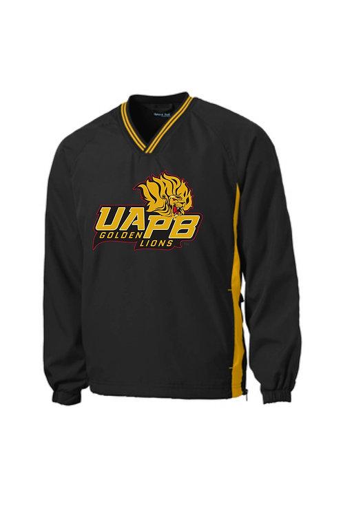 UAPB-SAN-JST62-BG
