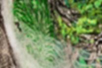 Green Ghost detail.jpg
