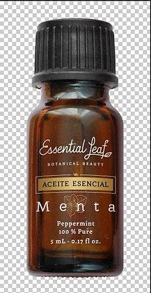 AE Menta 5ml Essential Leaf