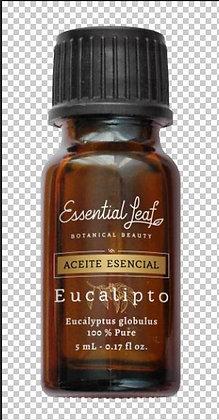 AE Eucalipto 5ml Essential Leaf