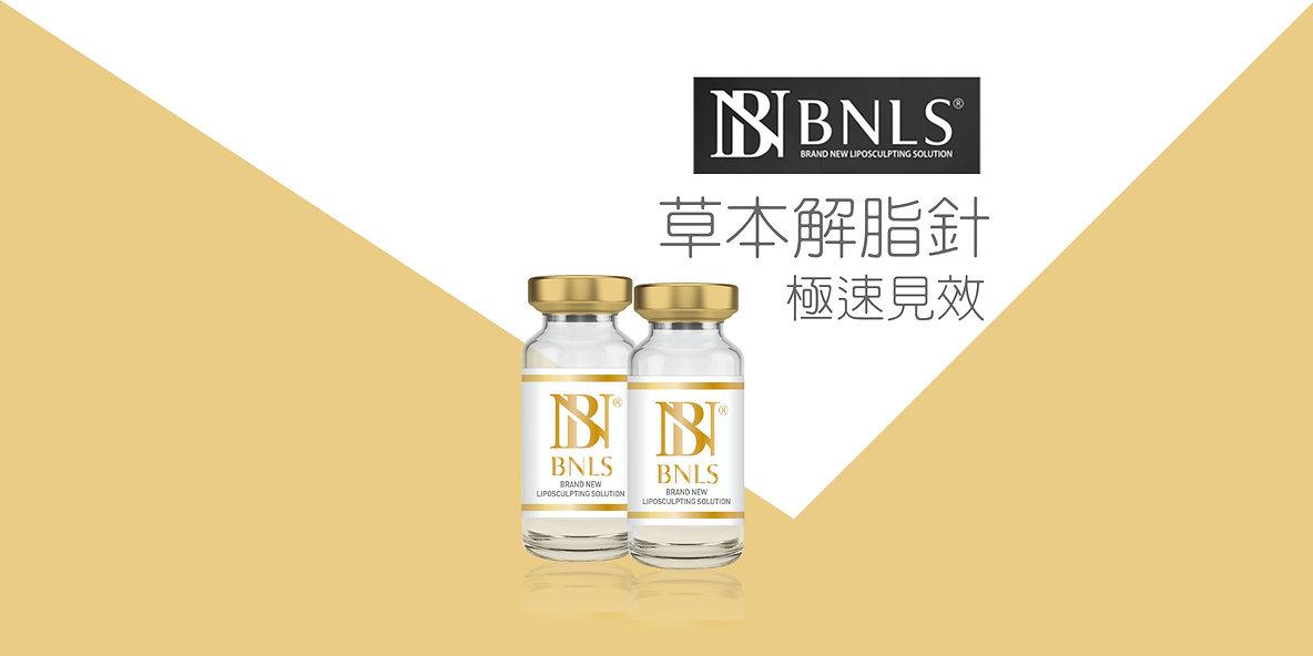 BNLS_Cover.jpg