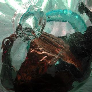 Sea Dragon, 2016