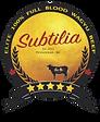 Subtilia logo.png