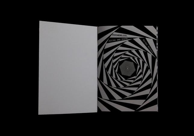 psy book open 3 copy.jpg