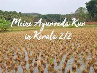 Meine Ayurveda-Kur in Kerala - Teil 2/2