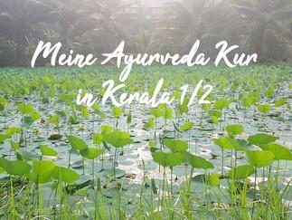 Meine Ayurveda-Kur in Kerala - Teil 1/2