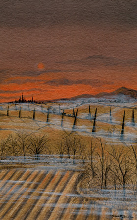 Scadrain Landscape