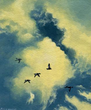 Everett Skies