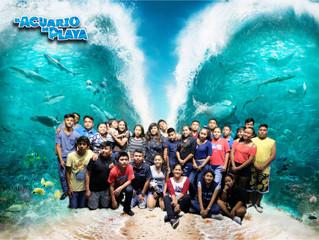 Aquarium and Cinema Hopping
