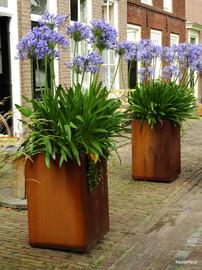 cortenstalen plantenbakken