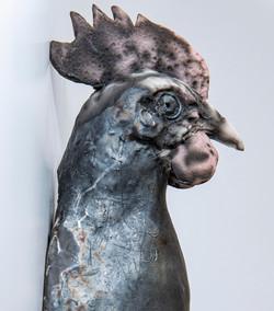 White leghorn hen ( Sold)