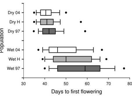 Rapid evolution of flowering time by an annual plant in response to a climate fluctuation