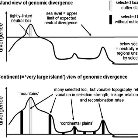 Widespread genomic divergence during sympatric speciation