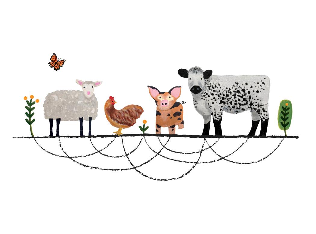 LincFarm_animals-connected_social