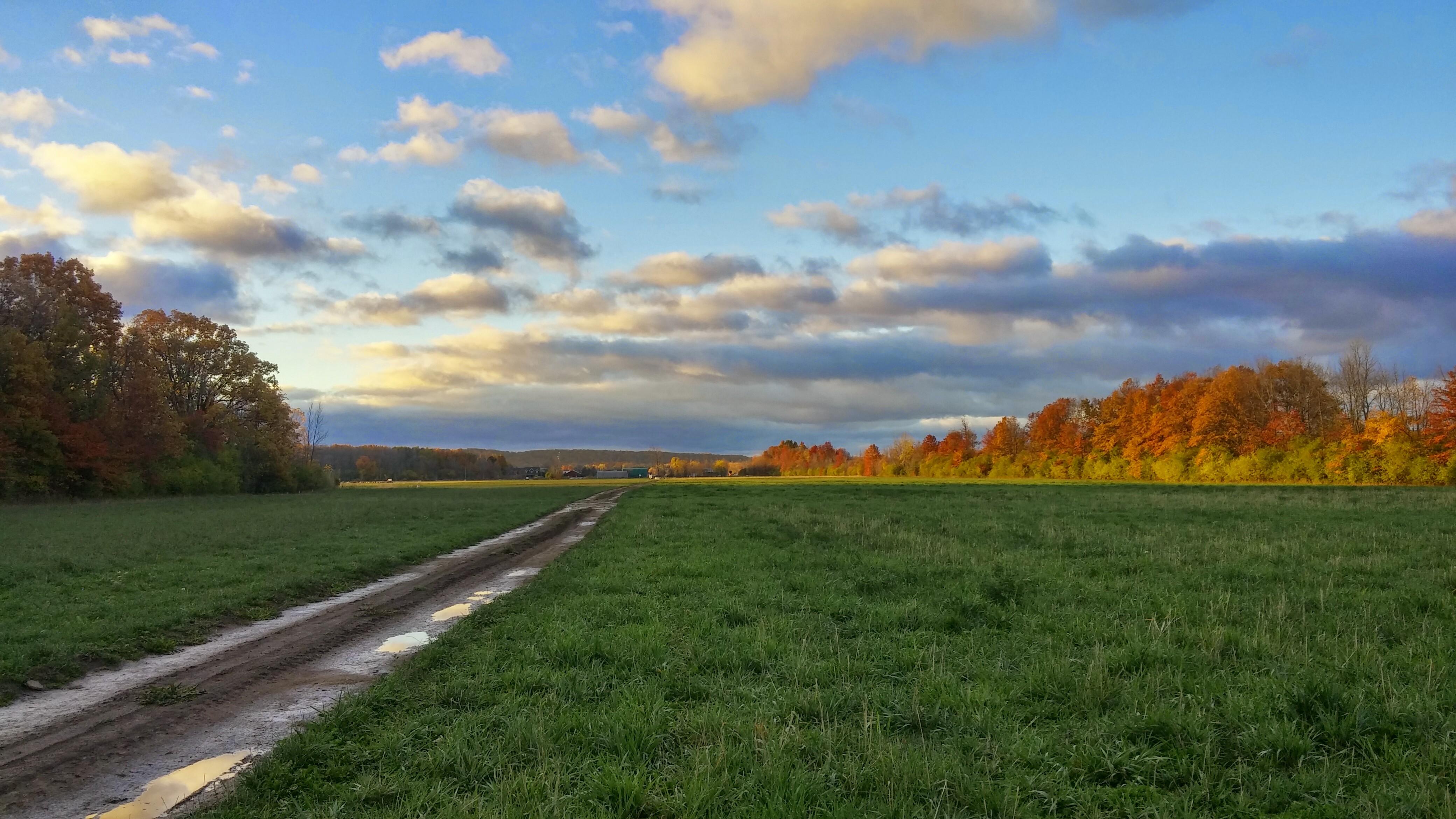 autums farm