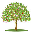 cherry-tree-clipart-fruit-drawing-16.jpg