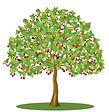 cherry-tree-clipart-fruit-drawing-16.jpg