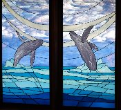 Humpback Whale Window