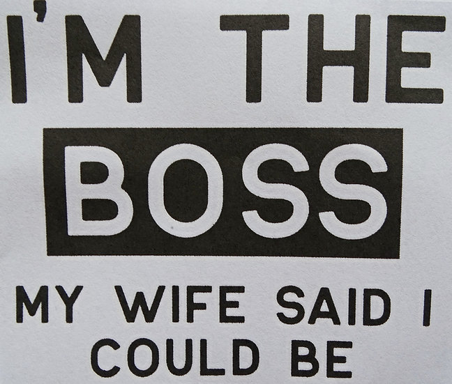 I'm the Boss, my Wife said i could be