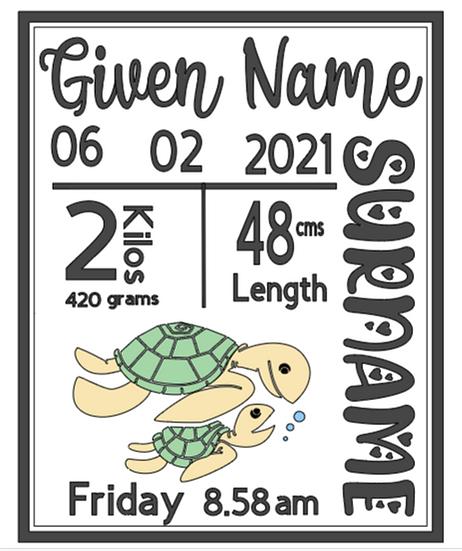 Turtle Birth Announcement