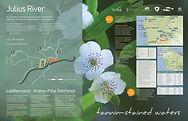 1-JuliusRiver-1400x900-PRINT.jpg
