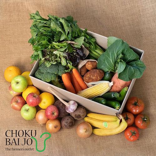 Large Organic Box