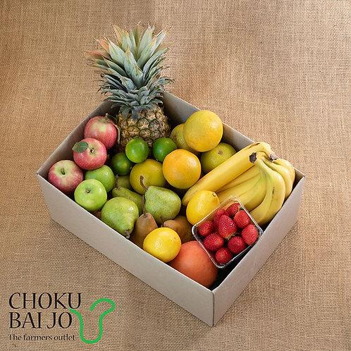 Large Fruit Box