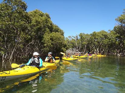 winter-paddle-festival-crosslands-reserve-at-berowra