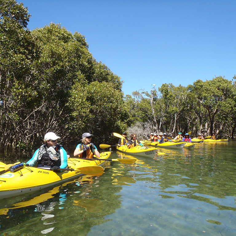 Winter Paddle Festival: Crosslands Reserve at Berowra