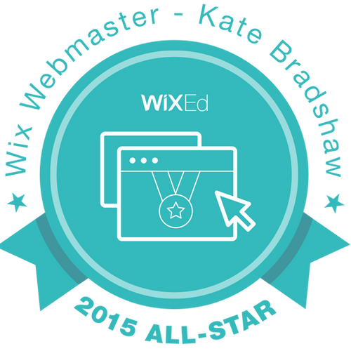 Wix 2015 All Star award for excellence