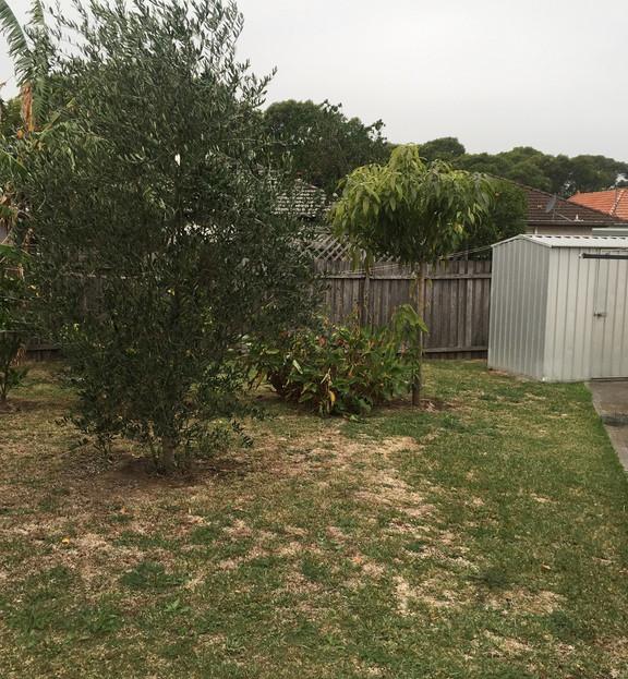 182 HS Garden SMALLER.jpeg