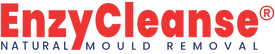 EnzyCleanse Logo Red.Blue Sml New R.png