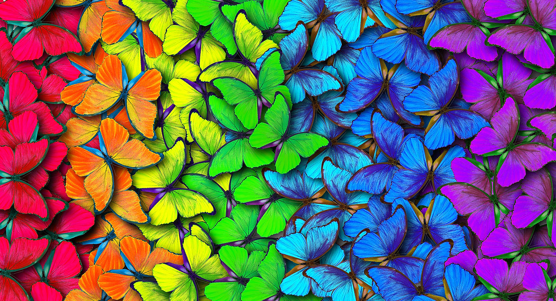 Colors of rainbow. Pattern of multicolor