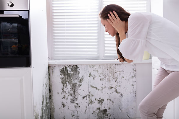 Xspor Australia - Is your home making you sick?