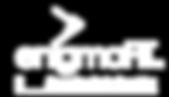 enigmaFIT executive brain coaching logo