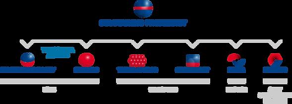 Soletanche Freyssinet Company Structure Diagram