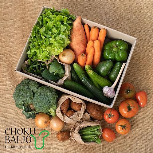 Large Vegetable Box