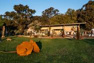 Rosby Wines Cellar Door & Sculpture Gard
