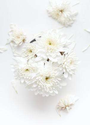 Flowers - Nordic White