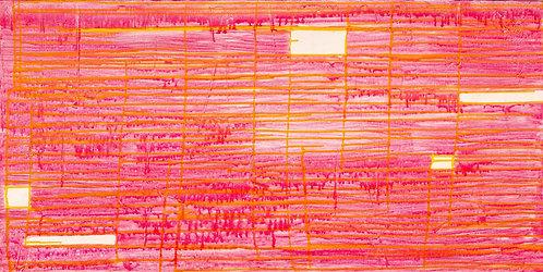 Virginia Baker Woolf - In the Pink