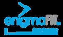 Enigma Fit logo -brain coaching.png