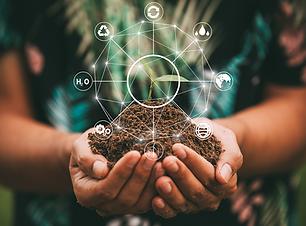 Environment & Sustainability, SHEQ Aspen-Thorn